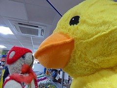 LD 1 Fri 1 Annandale DT & Duck (g crawford) Tags: ted water danger toy duck teddy crawford dt services servicestation annandale m74 annandalewater dangerted