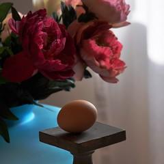 Buona Pasqua! (fiumeazzurro) Tags: foto
