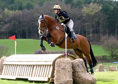 British Eventing (chudsonphotography) Tags: horse crosscountry sj equestrian equine horseriding horsejumping showjumping dressage kelsall equinephotography equestrianphotography kelsallhill