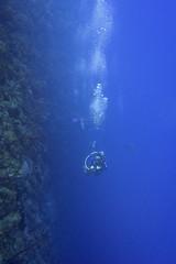 DSC05348 (Andreuha) Tags: caymanbrac abyss cliff underwatercliff scuba underwater