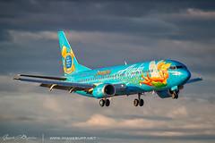 Tinkerbell (Angelo Bufalino - AirTeamImages) Tags: alaska tinkerbell disney boring boeing 737 alaskaairlines livery b737 737400