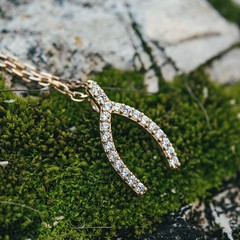Wishbone closeup (lilyandquinn) Tags: gold necklace moss sparkle luck lucky cz sparkly pendant wishbone luckycharm cubiczirconia luckcharms