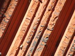 Ladrillo hueco (imageneslibres) Tags: ladrillo pared casa viga techo hueco losa