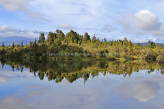 okarito lagoon: rabbit warren (rina sjardin-thompson photography) Tags: light newzealand reflection nature water weather rural river landscape nz southisland wilderness westcoast southernalps westland okarito waterscape okaritolagoon southwestland rinasjardinthompson