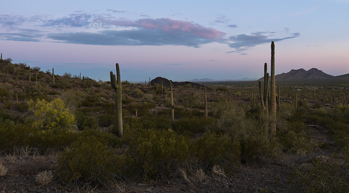 Thumbnail from Picacho Peak State Park
