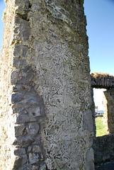 ballinasloe_160 (HomicidalSociopath) Tags: ireland cemetery architecture spring nikon crosses april ballinasloe d60