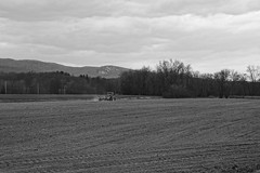 Seed By Seed... Row By Row (thetrick113) Tags: blackandwhite tractor corn farm machine seed equipment newyorkstate agriculture dust jd planter planting johndeere farmequipment hudsonvalley farmmachinery implement johndeeretractor cornplanter farmimplement 5520 ulstercountynewyork sonyslta65v fourrowplanter newyorkstateagriculture johndeeretractor5520 johndeere5520
