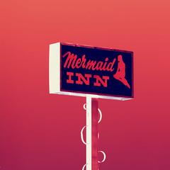 Mermaid Inn, Plate 2 (Thomas Hawk) Tags: california usa unitedstates unitedstatesofamerica motel mermaid southbay menlopark fav10 fav25 mermaidinnmotel