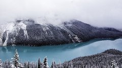 Peyto Lake, Canadian Rockies (Bluesilver85) Tags: park blue parco white mountain lake snow canada color nature water colors clouds wonderful landscape lago landscapes amazing view natural happiness national alberta stunning banff pure montagna paesaggio spectacle peyto nazionale mopuntains lovecanada
