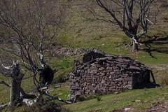 ItsusikoHarria-36 (enekobidegain) Tags: mountains montagne monte euskalherria basquecountry pyrnes pirineos mendia paysbasque nafarroa pirineoak bidarrai itsasu itsusikoharria