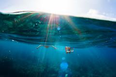Serendipity (sowenderful) Tags: ocean blue water coral hawaii underwater snorkel maui snorkeling lanai select sunflare underwaterphotography underwaterphoto