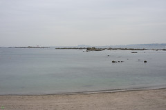 20160424-DSC_8880.jpg (d3_plus) Tags: sea sky fish beach nature japan nikon scenery diving daily snorkeling  28105mmf3545d nikkor  kanagawa hayama     dailyphoto  apnea  thesedays  28105    28105mm skindiving  zoomlense     28105mmf3545 d700 281053545 nikond700 aiafzoomnikkor28105mmf3545d 28105mmf3545af   aiafnikkor28105mmf3545d