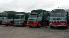 The Cheshire Run 2016 (Reiver RE229) Tags: bedford mercury geoff g lad erf comet lv leyland tk newsome 2016 aec a thecheshirerun
