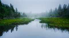 Marshed (Brian Truono Photography) Tags: travel trees summer panorama lake reflection tree nature water rock fog stone forest landscape us nationalpark pond rocks unitedstates nps hiking pano maine foggy overcast panoramic calm trail swamp serene marsh nationalparkservice contemplate acadia mountdesert wetland jordanpond acadianationalpark mtdesert