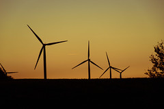 Wind farm sunset (gdajewski) Tags: sunset field landscape ngc poland windfarm nationalgeographic nikond7000 flickrclickx nikkor18140mmf3556gdxvr polska2016