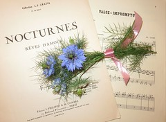 Love in a mist with a melody! (Traveling with Simone) Tags: blue music flower fleurs performance piece loveinamist rubinstein liszt liebestraum cziffra valseimpromty rvesdamour