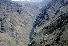 View of Hells Canyon-Wallowa Whitman (Forest Service Pacific Northwest Region) Tags: wallowa whitman wallowawhitman wallowawhitmannf wallowawhitmannationalforest nationalforest nationalforests usforestservice northeastoregon oregon pacificnorthwest showcase easternoregon