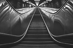 Going Up? #escalator #rulltrappa #blackandwhite #monochromatic #tunnelbanan #vstraskogen #stockholm #architecture #canon #2015 #fotolinsen (Fotolinsen.com) Tags: blackandwhite architecture canon stockholm escalator monochromatic 2015 tunnelbanan vstraskogen rulltrappa stationer stockholmslokaltrafik fotolinsen larsjonssonwwwwfotolinsencom