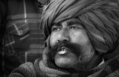 Pushkar-04158-20151121-PE7C2267-Edit-Edit-3 (Swaranjeet) Tags: november portrait horses people india colour portraits canon eos is indian traditional full moustache camel frame indie colourful turban tradition fullframe dslr ethnic pushkar 70200 f28 ef rajasthan mela sjs rajasthani 2015 camelfair hindustan animalfair marwari swaran sjsphotography 5dmkiii canonef70200f28lisiiusm swaranjeet eos5dmkiii canoneos5dmkiii swaranjeetsingh swaranjeetphotography sjsvision bharatvarsh