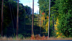 Goffstown to New Boston, NH - IMGP2242 (catchesthelight) Tags: telephonepoles leafpeeping goffstownnh wwwgeneralstarkbywayorg generaljohnstarkscenicbyway