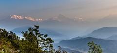 Annapurna sunrise from Sarangkot (kcchoy60) Tags: nepal annapurna sarangkot 2015