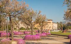 Palma de Mallorca (truszko) Tags: spain europe es palmademallorca balearicislands majorka