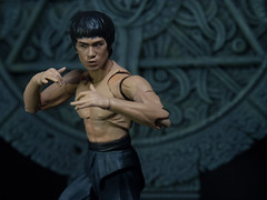 P1294609 (KVN Yeh) Tags: toy toys action figure brucelee bandai shfiguarts