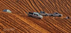#تويوتا #هايلوكس #سيارة #رمل #طعوس #صورة #photo #photos #Toyota  #Hilux #cars #car  #hdr #cars  #landscape #nature #photographys #ksa #saudiarabiatag  #saudiarabia #الخرارة #المزاحمية #تطعيس #التطعيس #نفود #تصويري #عدستي #بعدستي (Instagram x3abr twitter x3abrr) Tags: cars nature car landscape photo photos toyota saudiarabia hdr ksa hilux سيارة صورة عدستي تصويري photographys رمل بعدستي طعوس تويوتا تطعيس نفود المزاحمية هايلوكس التطعيس الخرارة saudiarabiatag
