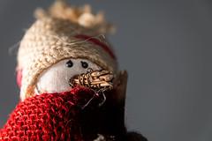Brrrrrr!!!! (clemmat) Tags: portrait snowman bokeh bonhommedeneige tamron1750f28 tamron1750mmf28 canoneos70d eos70d