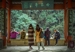 What It Said - Hangzhou, China (, ) (dlau Photography) Tags: life china trip travel vacation people cold green temple spring outdoor sightseeing lifestyle style tourist hangzhou pavilion rest   visitor shady soe      lingyin