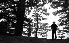 Mysterious Caldera (Georgie Pauwels) Tags: blackandwhite tree nature monochrome silhouette blackwhite caldera mysterious fujifilm lapalma