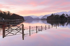 Winter Pinks (Tony Armstrong-Sly) Tags: trees sky reflection water forest sunrise reflections landscape lakes lakedistrict earlymorning cumbria derwentwater waterscape