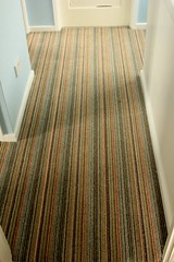 16-02 Stair runner 009 (alasdair massie) Tags: home carpet stair barton