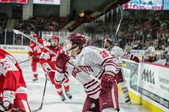 Hockey vs. BU (dailycollegian) Tags: umass bostonuniversity collegehockey umasshockey shannonbroderick josephwidmar