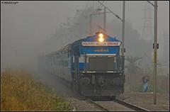 BGKT WDP-4 (Abhishek Jog) Tags: from vikram sc fog speed good junction jp express et towards jaipur ki charging dense bhopal bpl blasting jn bhagat mso kothi secunderabad itarsi hbj lhf 20092 jpsc wdp4 bgkt 19713 habibganj misrod mandideep mddp jaipursecunderabad bhopaljn