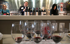 Simply Italian Great Wines Americas Tour - Miami (Vinitaly International) Tags: ian italian tour kim wine miami stevie great international simply academy americas wines carmignano seminario vinitaly dagata grignolino fivi