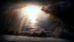 soleil sur  lac gel (valade99) Tags: sun lake nature water landscape frost icecold