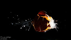 Fotografa de alta velocidad 5 (@ngel Prez Rodrigo) Tags: huevo altavelocidad explosin