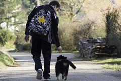 (433) (boomer_phil) Tags: chien respect amour libert promenade chiot fidle