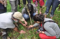 Biodiversity assessment (mansi-shah) Tags: rainforest farming coorg madikeri forestecology mansishah rainforestretreat jenniferpierce ceptsummerschool