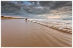 Seahorse (Amanda Wade Photography) Tags: morning sea horse motion beach nature animals clouds fineart earlymorning beachlife stormclouds morningwalk beachscene beachscape horsencart colondonderry morningcolours