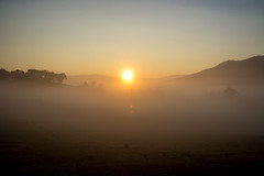 Jameison-23 (Grant C67) Tags: morning sun fog sunrise country australia hills