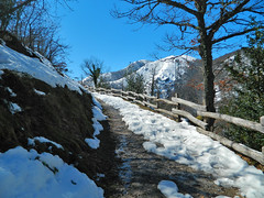 Camino a la cima (Blancaconde97) Tags: winter naturaleza snow nature nikon nieve asturias coolpix invierno l310