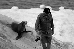 MAN vs SEAL (Passion For Photos) Tags: california white man black beach animal san diego seal and