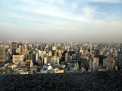 IMG_1905p (Milan Tvrd) Tags: brazil saopaulo paulo so edificioitalia
