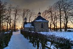 Fagnes - 10 (Ld\/) Tags: winter sunset mars snow nature beauty belgium belgique belgie ardennen ardennes eifel 23 venn hoge malmedy hautes fagnes wallonie hautesfagnes 2016 ardenne rgion venen hohes waimes rserve jalhay