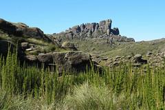 Macio das Prateleiras (BrunoNavas) Tags: brazil brasil riodejaneiro br rj montaa itatiaia montanha montain rocha montanhismo pni prateleiras parquenacionaldoitatiaia maciodasprateleiras