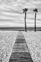 Pasarela al mar II (Gateway to the sea II) (jmpastorg) Tags: byn blancoynegro blackandwhite black white españa spain alicante sanjuan 2016 mar marenostrum sea bw 1855 d5100 explore