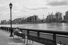 Connecting..... (999theo999) Tags: pictures city nyc newyorkcity blackandwhite usa newyork river bench photography reading photo spring amazing cool manhattan sony super shooting newyorkstate everyday eastside today bigapple gentleman mycity mypicture ilovenewyork coolshot newyorkstateofmind mycapture a6000