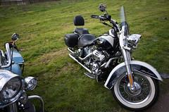 _R001325.jpg (Alain Stoll) Tags: bike indian motorbike harleydavidson bikers hellsangels tancrou
